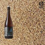 brasserie-dulion-biere-blanche-epeautre-bio